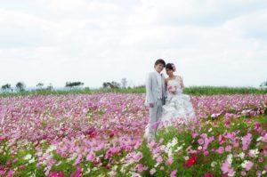 location-flower
